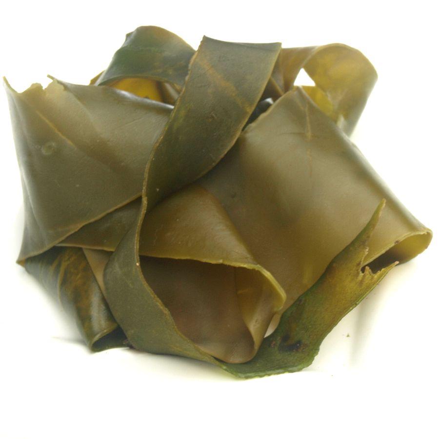 frische Kombu Blätter