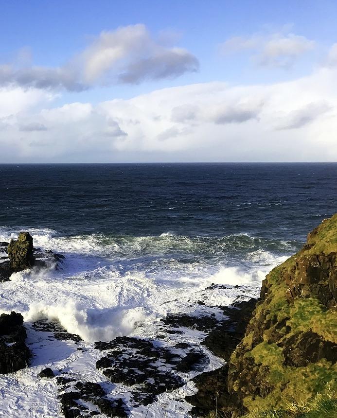 Irland Algen Clare